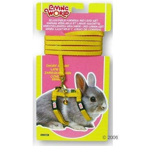 Hagen Rabbit Lead And Harness